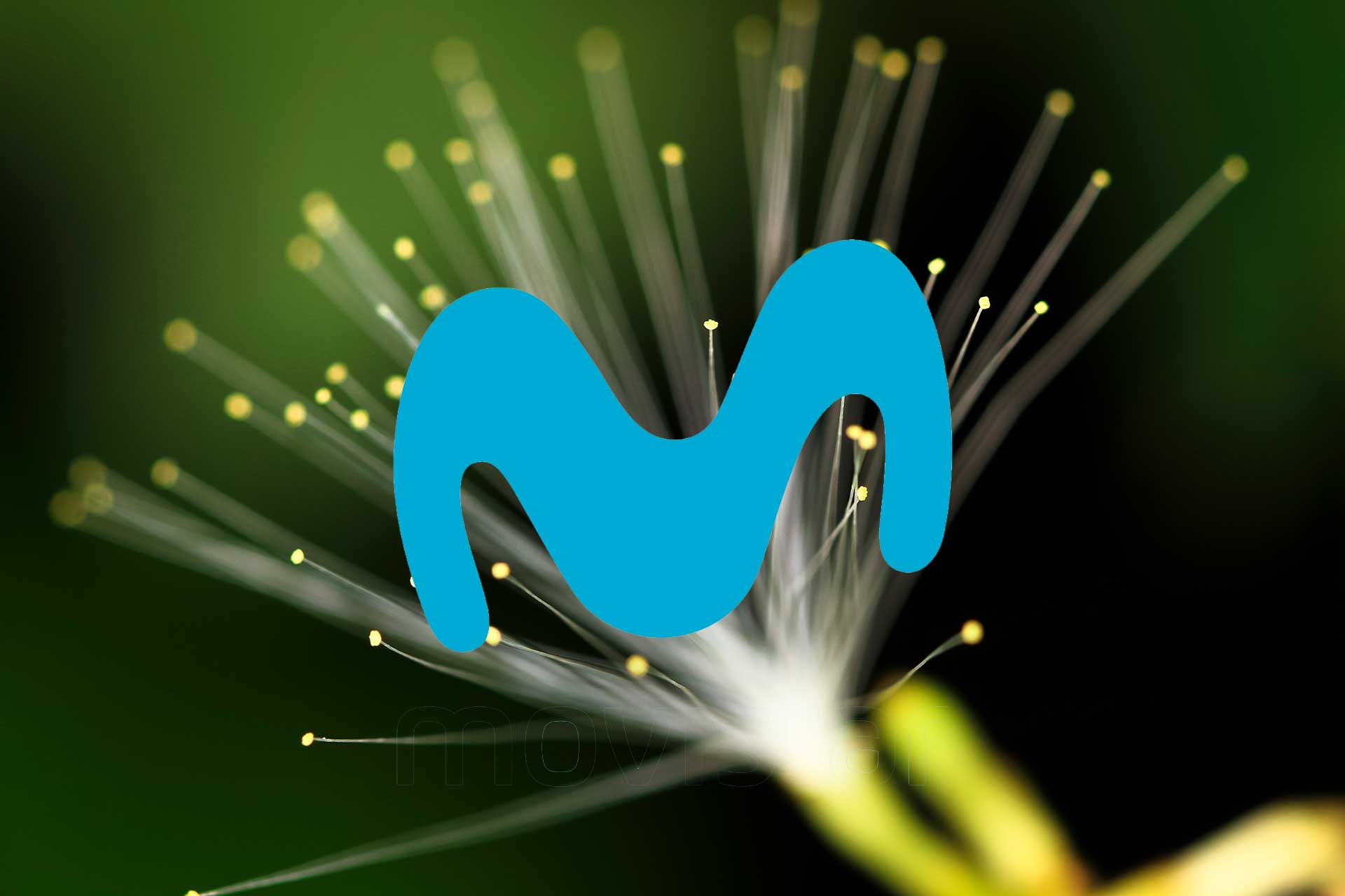 Movistar fibra 1 Gbps